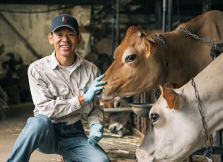 酪農家、平松牧場さん